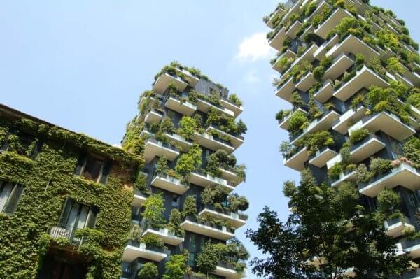 SINGAPORE – Urban Farming & Renewable Energy